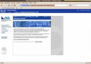 Bildschirmfoto-Datenschutzbeauftragter - Passwortcheck - Mozilla Firefox